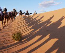 CESDA34 : Road trip dans le sud marocain